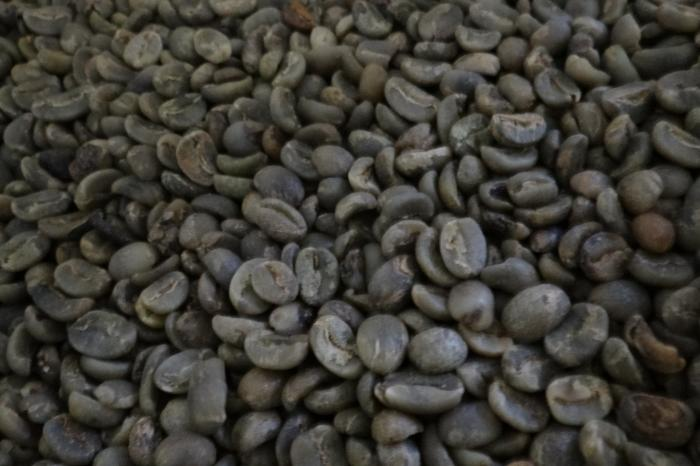 Improving coffee quality in the Ecuadorian Andes region