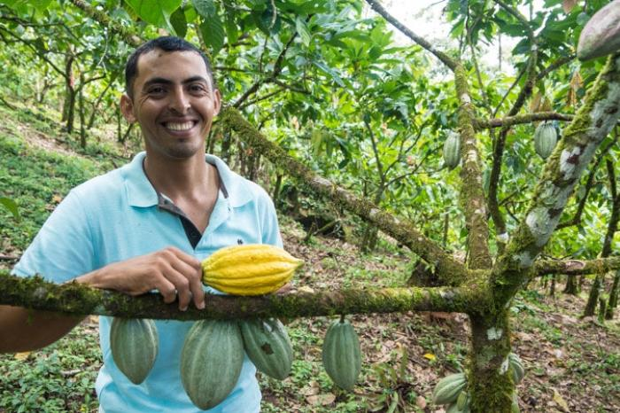 A new generation of cocoa producers in Central America